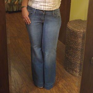 Venezia Flared Jeans SZ 14 EUC